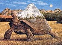 turtlespirit.jpg